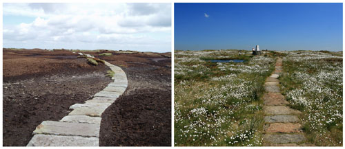The trig point on Black Hill, before seen before and after work by Moors for the Future Partnership to revegetate the area