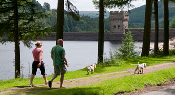 people walking by a reservoir