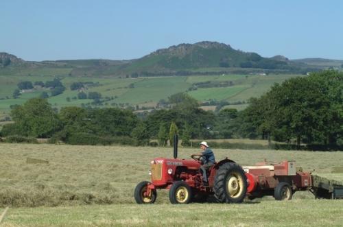 hay-making-in-the-south-west-peak_001