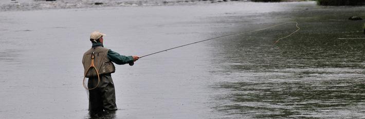 Banner-Fishing.jpg