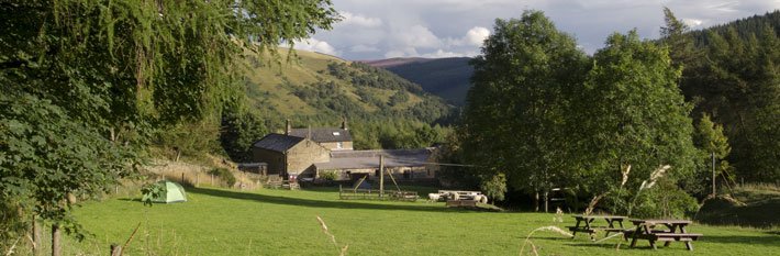 banner-hagg-farm.jpg