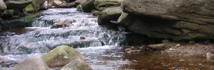 banner-river.jpg